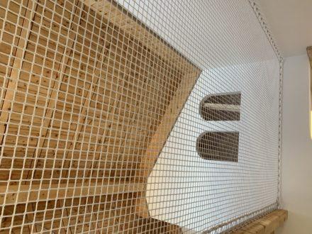 Filet de mezzanine
